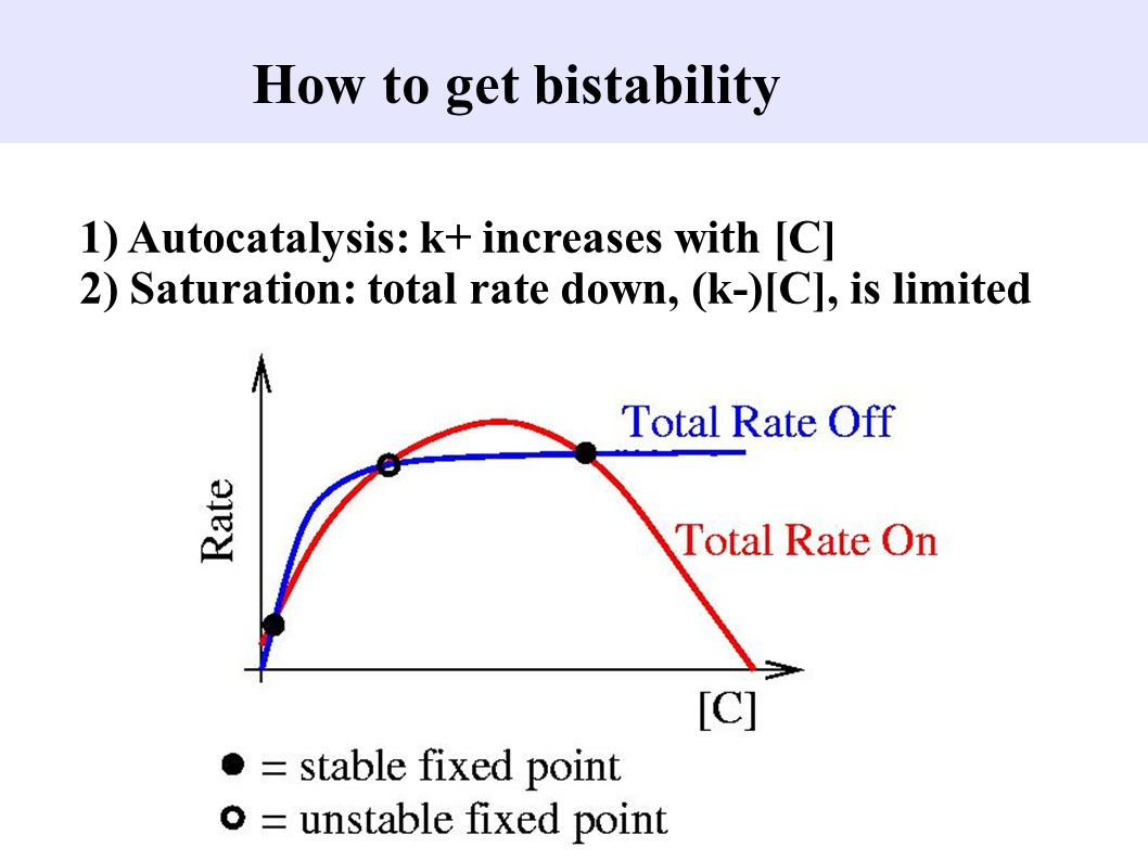 How to get bistability 1) Autocatalysis: k+ increases with [C]
